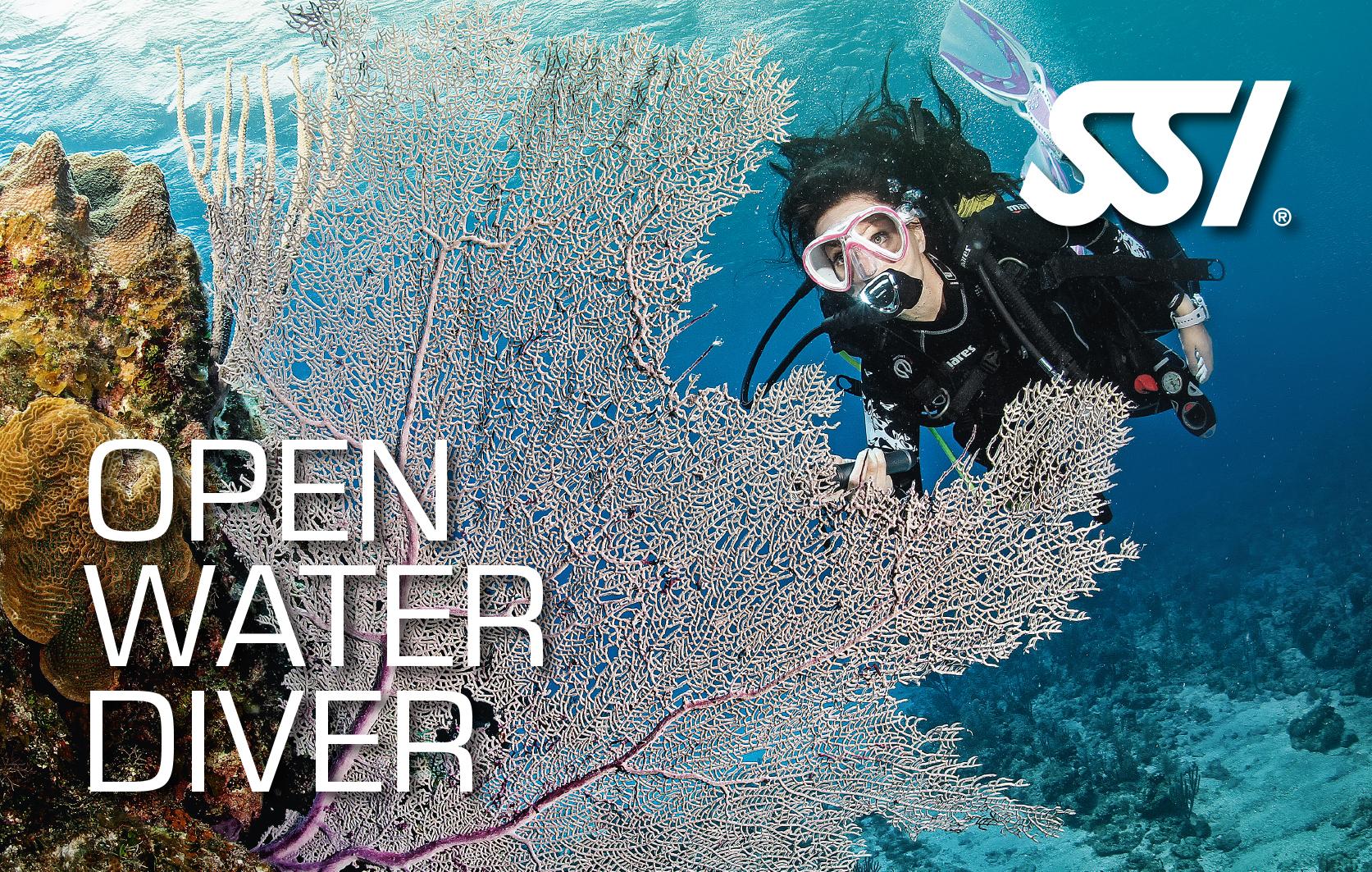 Corsi subacquei di primo livello